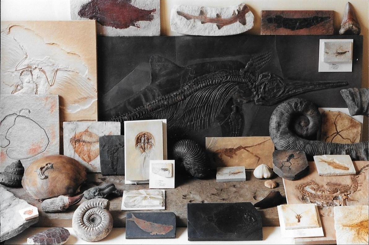 An exhibition of works produced by Paul and Alethea as Palaeo Replicas