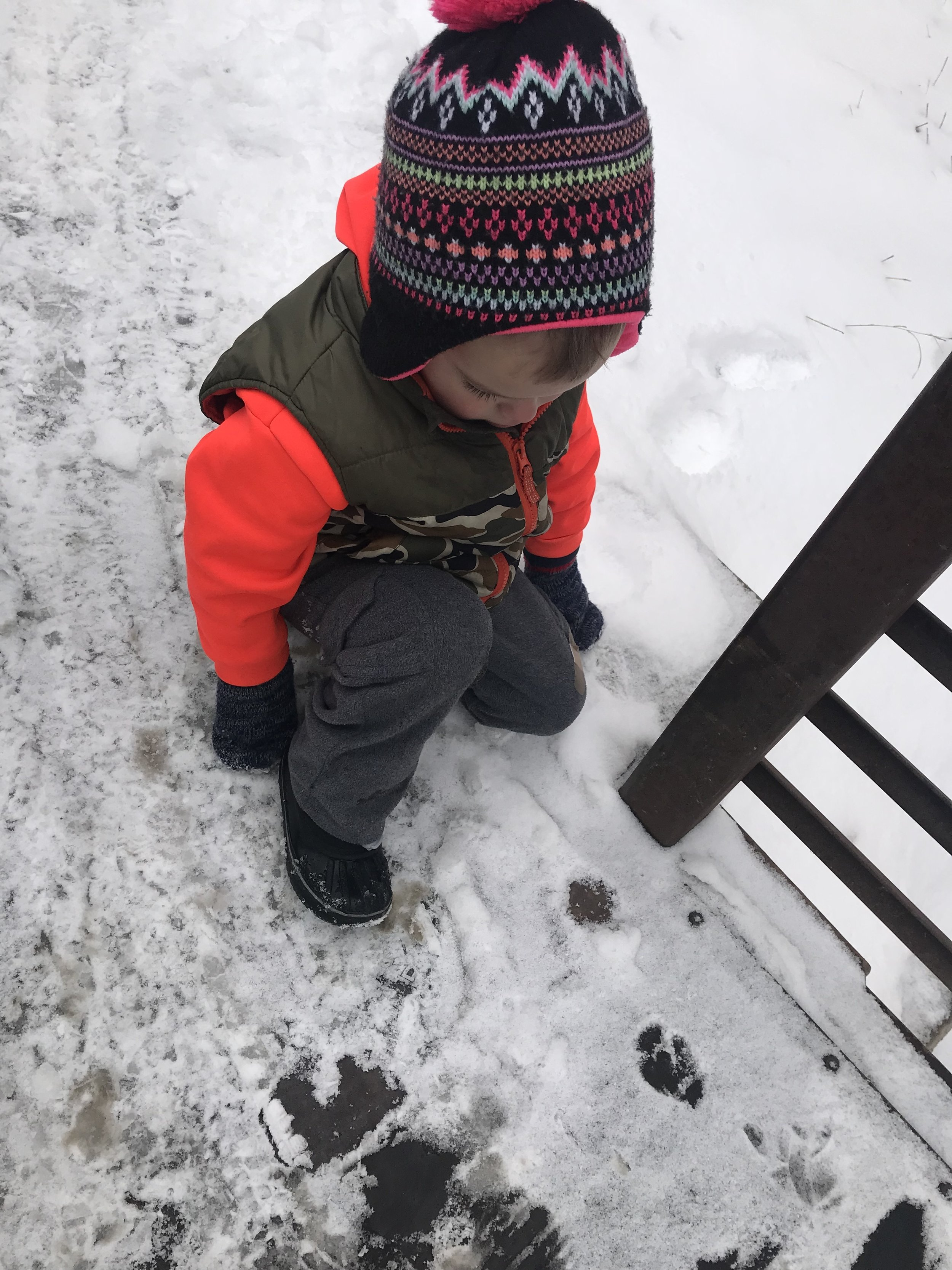 "On our winter nature walk, Huck found tracks in the snow. ""Look, I found giraffe prints!"""