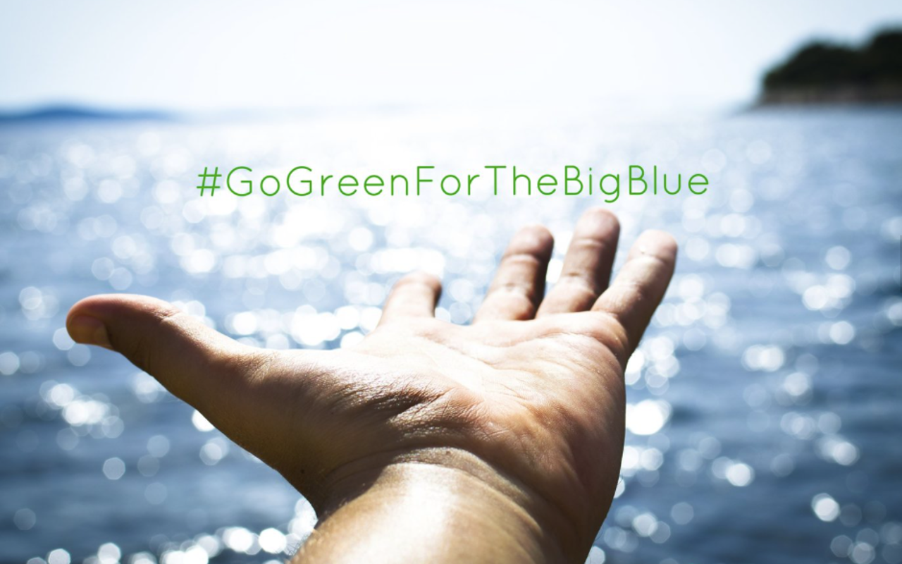go green environment sustainability consulting marine