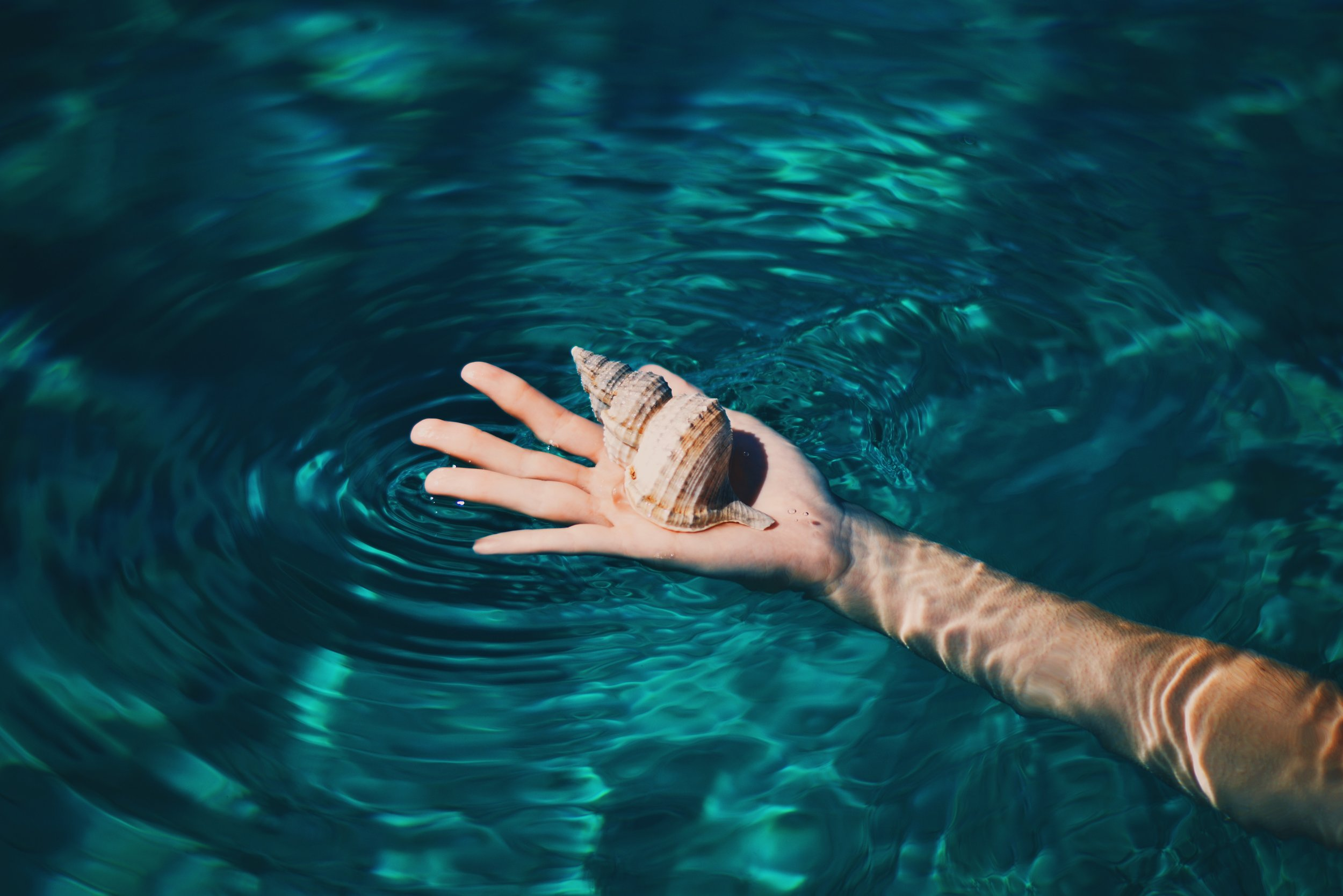 Hand with shell