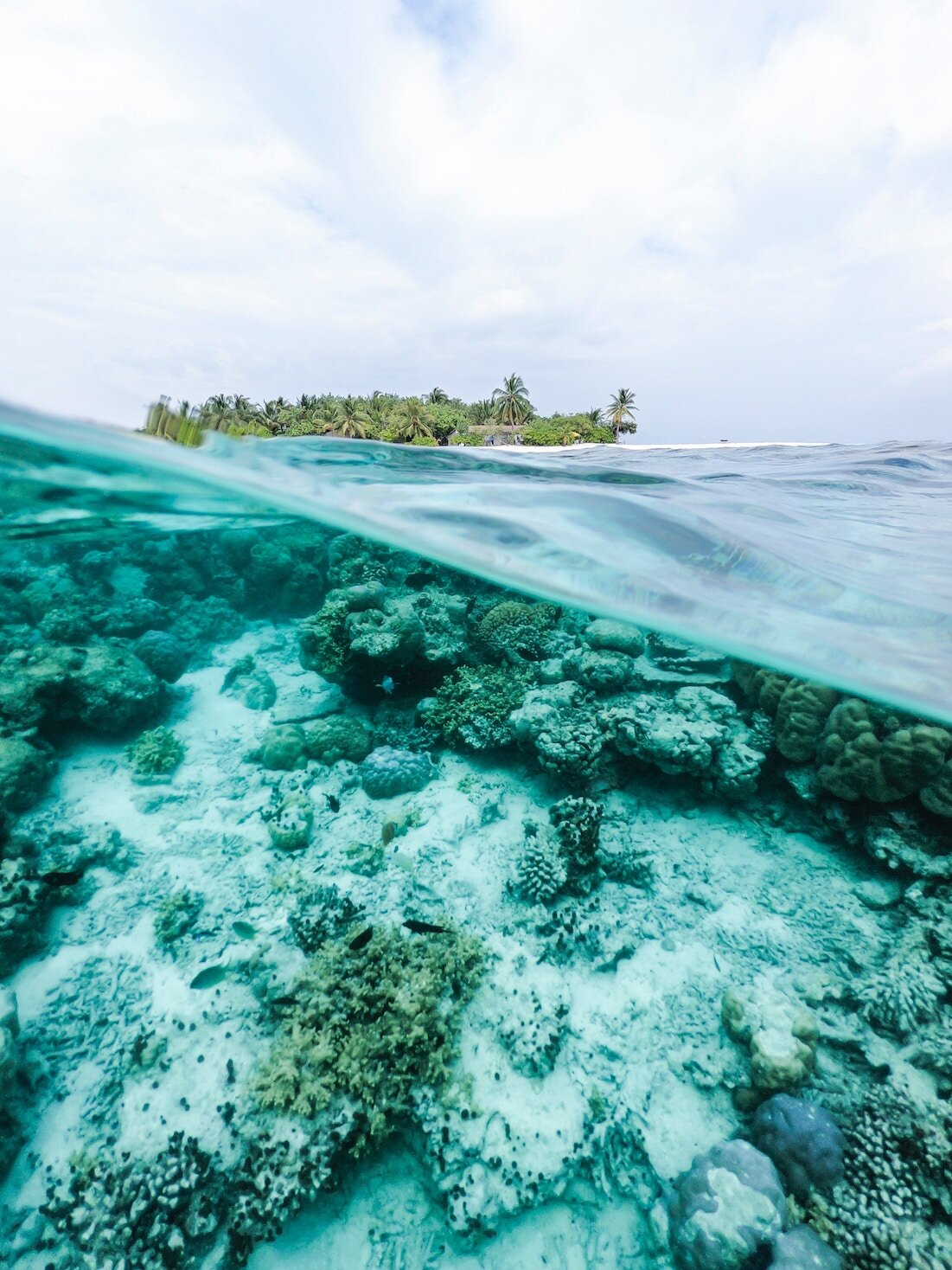 Sustainable ocean environment