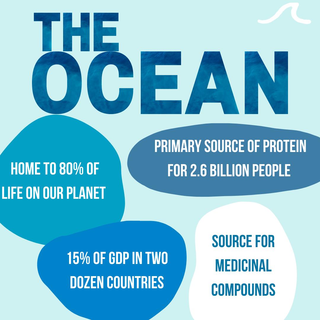 Ocean Facts (Copy)