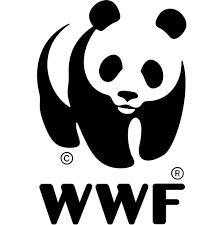 World Wildlife Foundation WWF and Panda Logo
