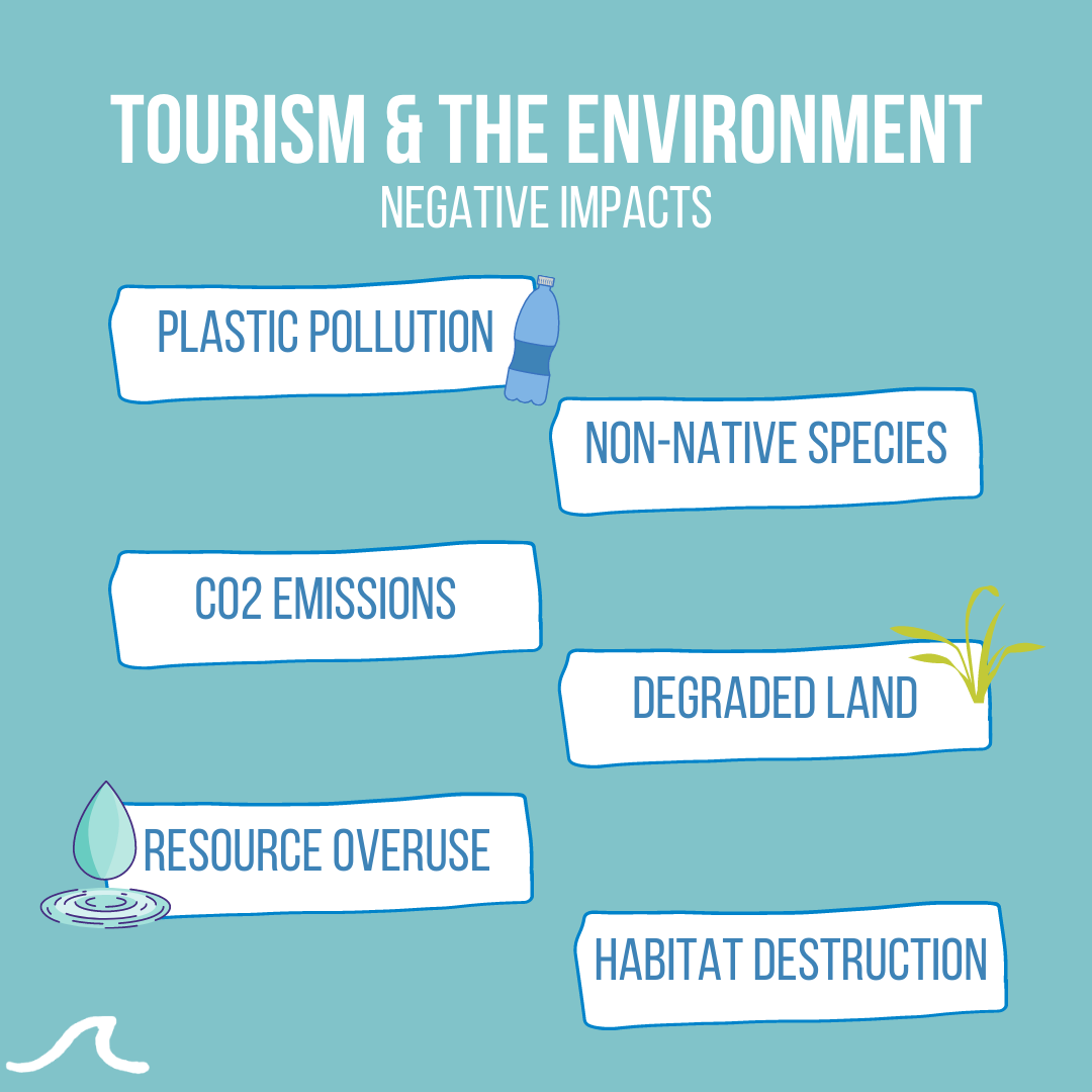 Negative Impacts of Tourism on the Environment (Copy)
