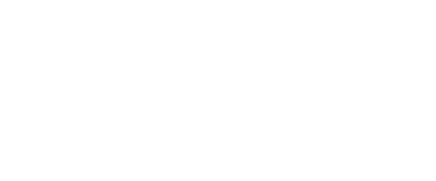bertha_logo_gray_transparent.png