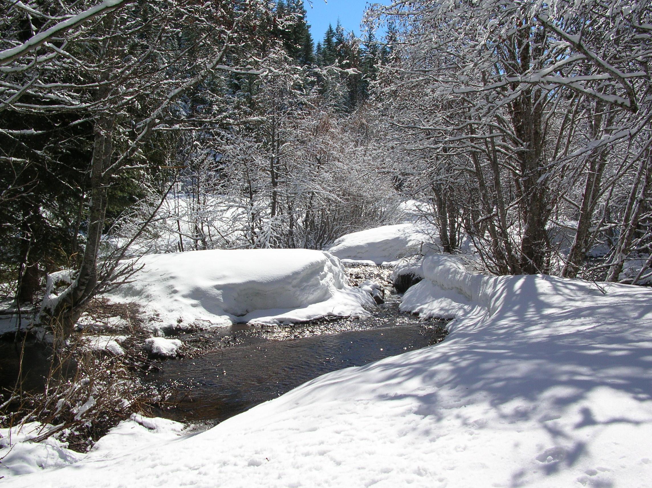 Picturesque-Barlow-on-Mt-Hood1.jpg
