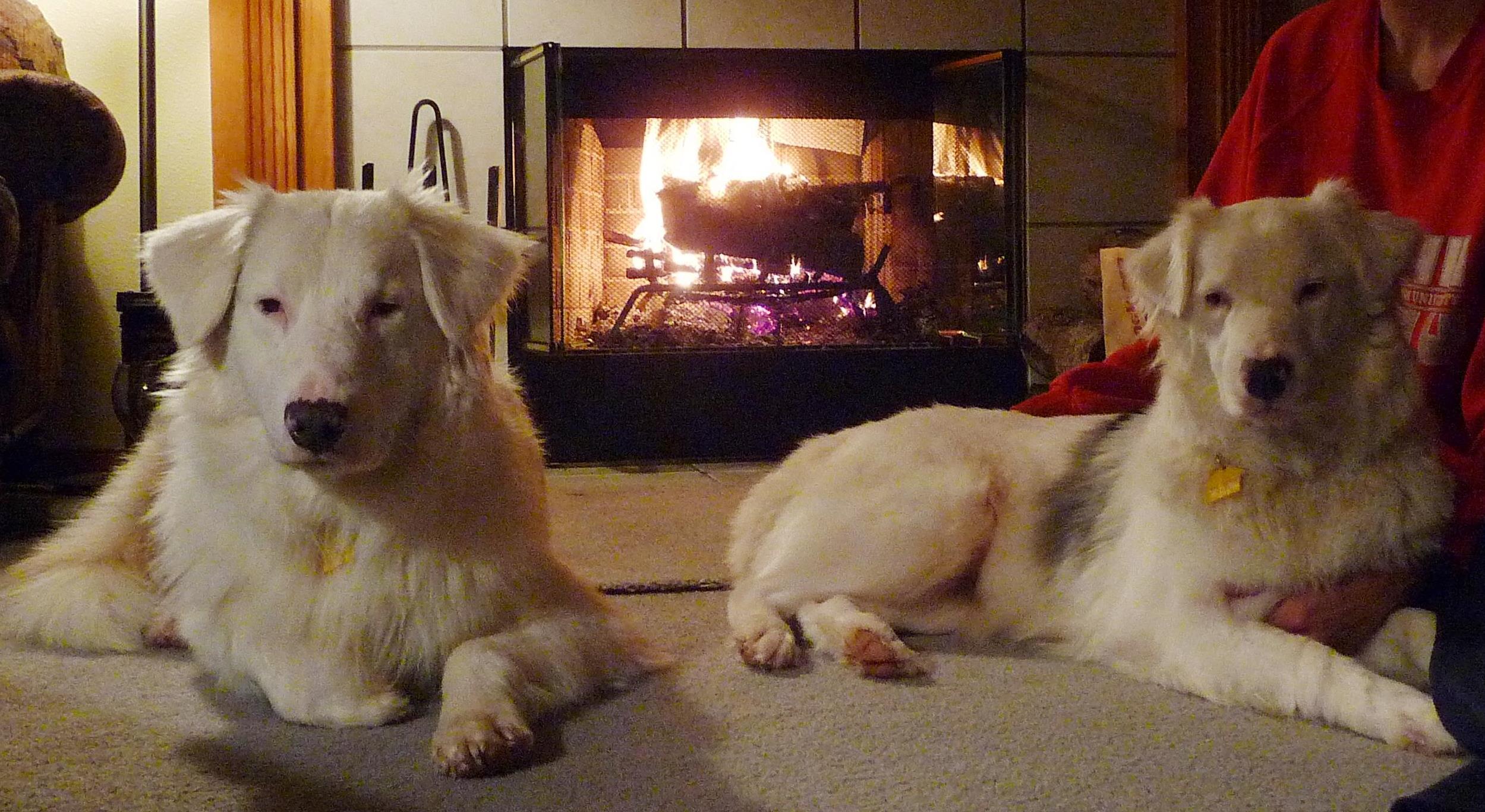 1-10-14-Charming-and-Snow-enjoying-a-fire.jpg