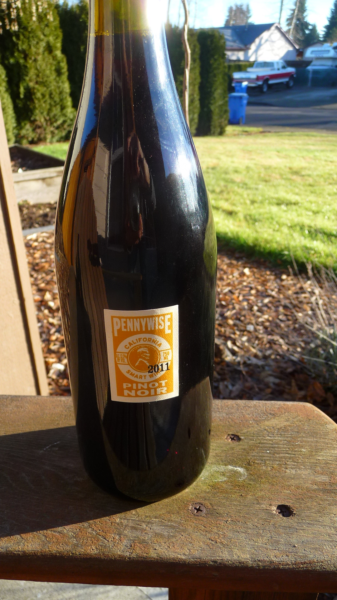 2011-Pennywise-Pinot-Noir-basking-in-our-sunshine.jpg