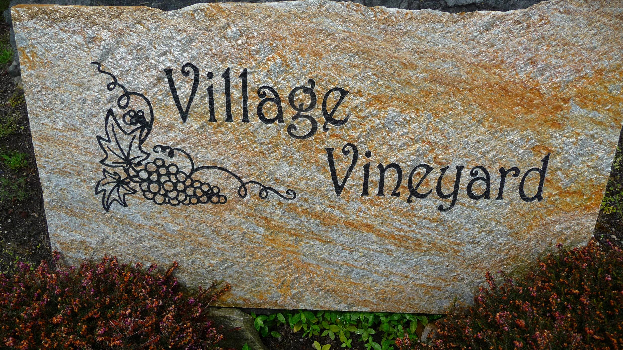 Village-Vineyard.jpg