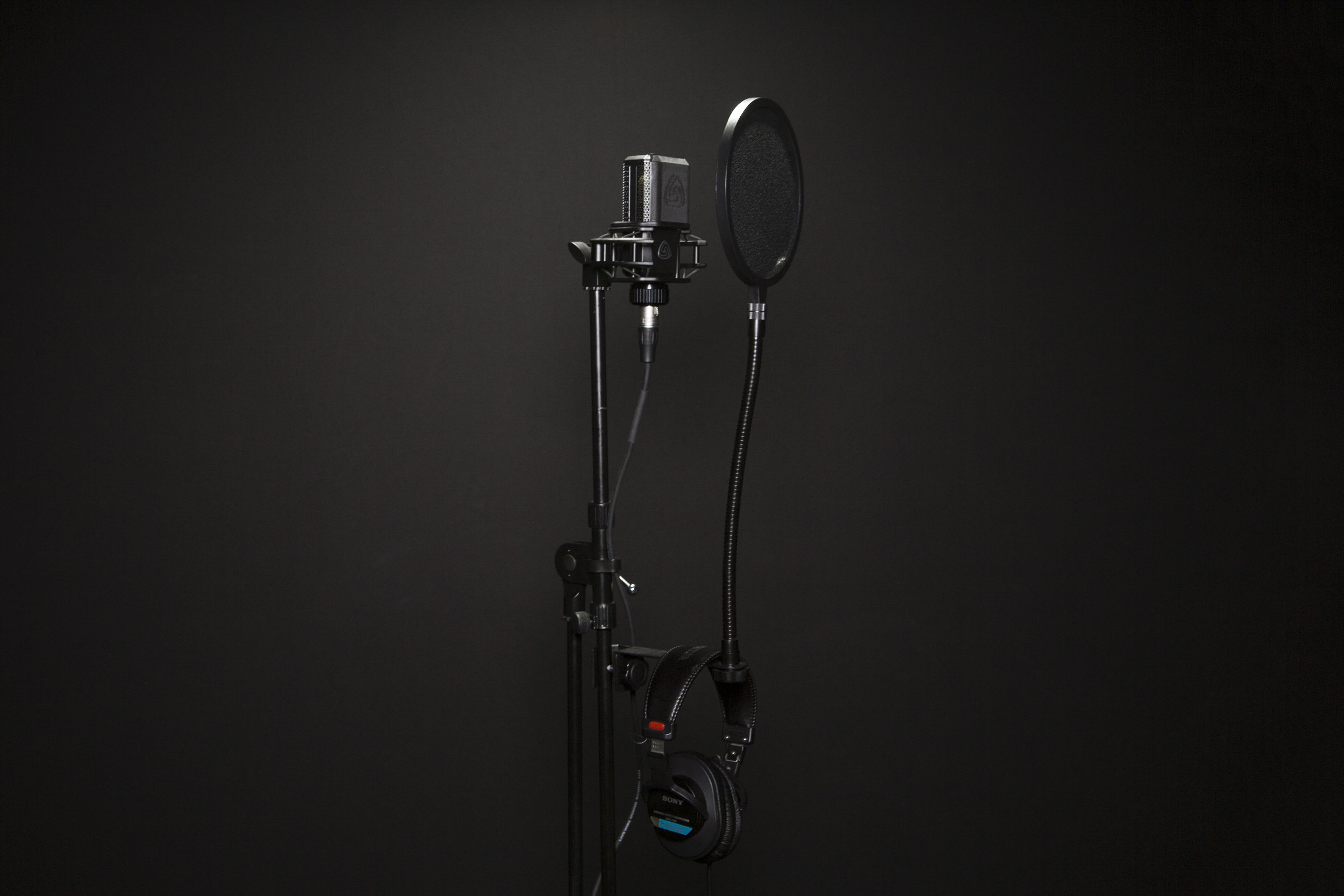 SFMW_Voice Recording-2 copy.jpg
