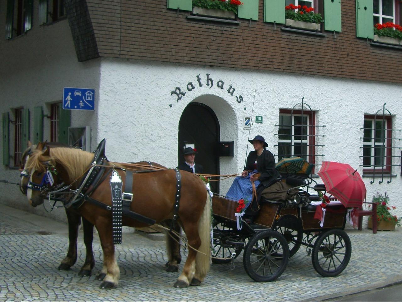 horse-drawn-carriage-252901_1280.jpg