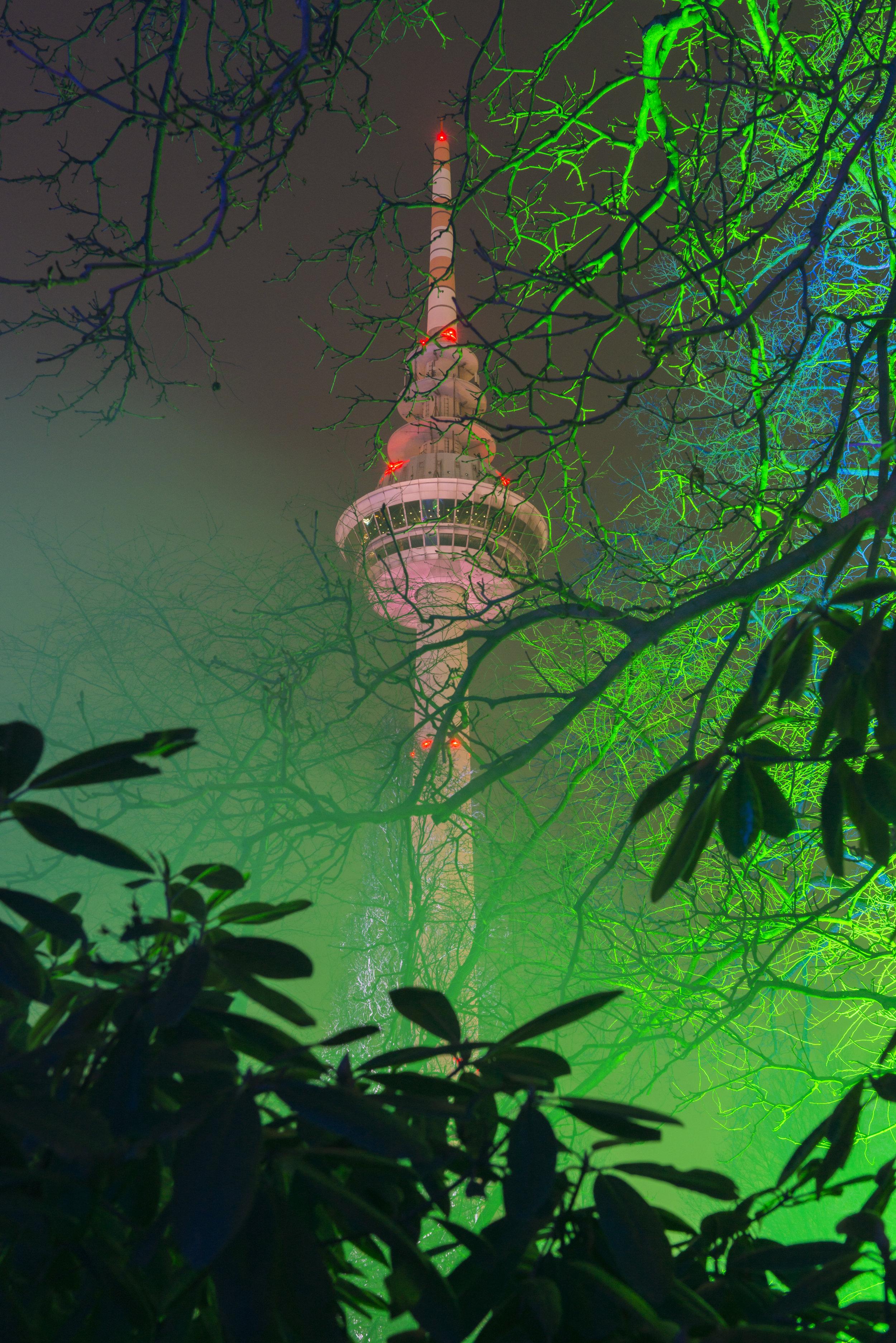 Winterlichter_ Luisenpark.jpeg