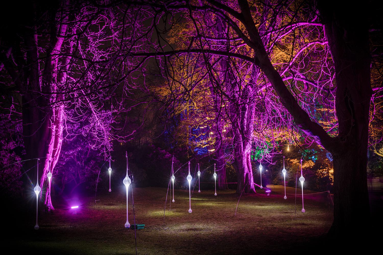 Winterlichter_Luisenpark.jpg