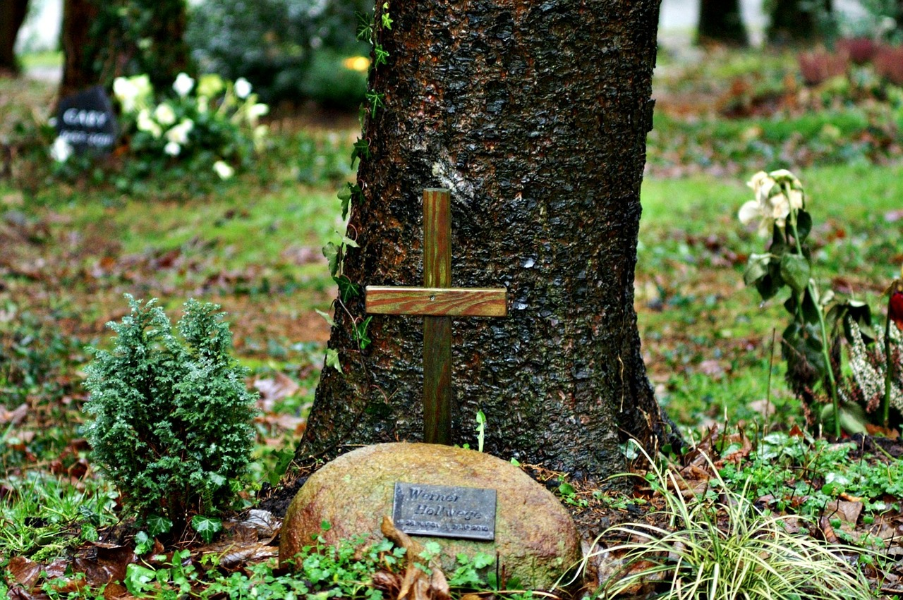 Friedwald...urn forest burial