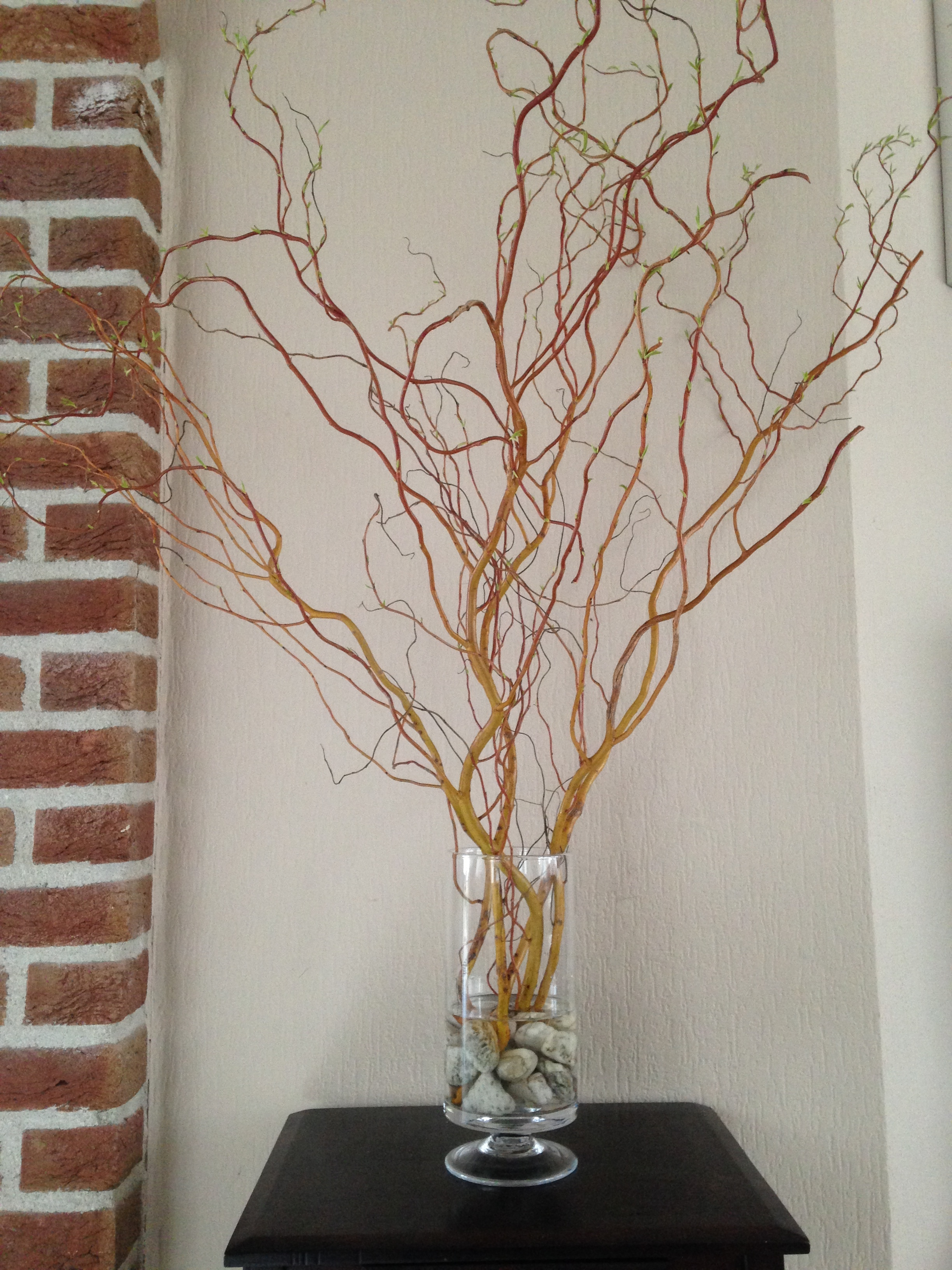 I purchased these twigs from our local garden store, popped in some stones from our garden, and placed it in a vase.