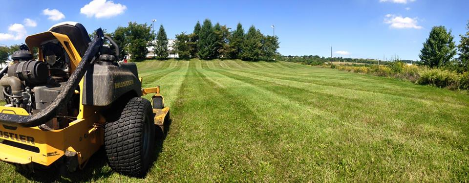 Landscape maintenance, including lawn care in Reading, Lebanon, Allentown, PA