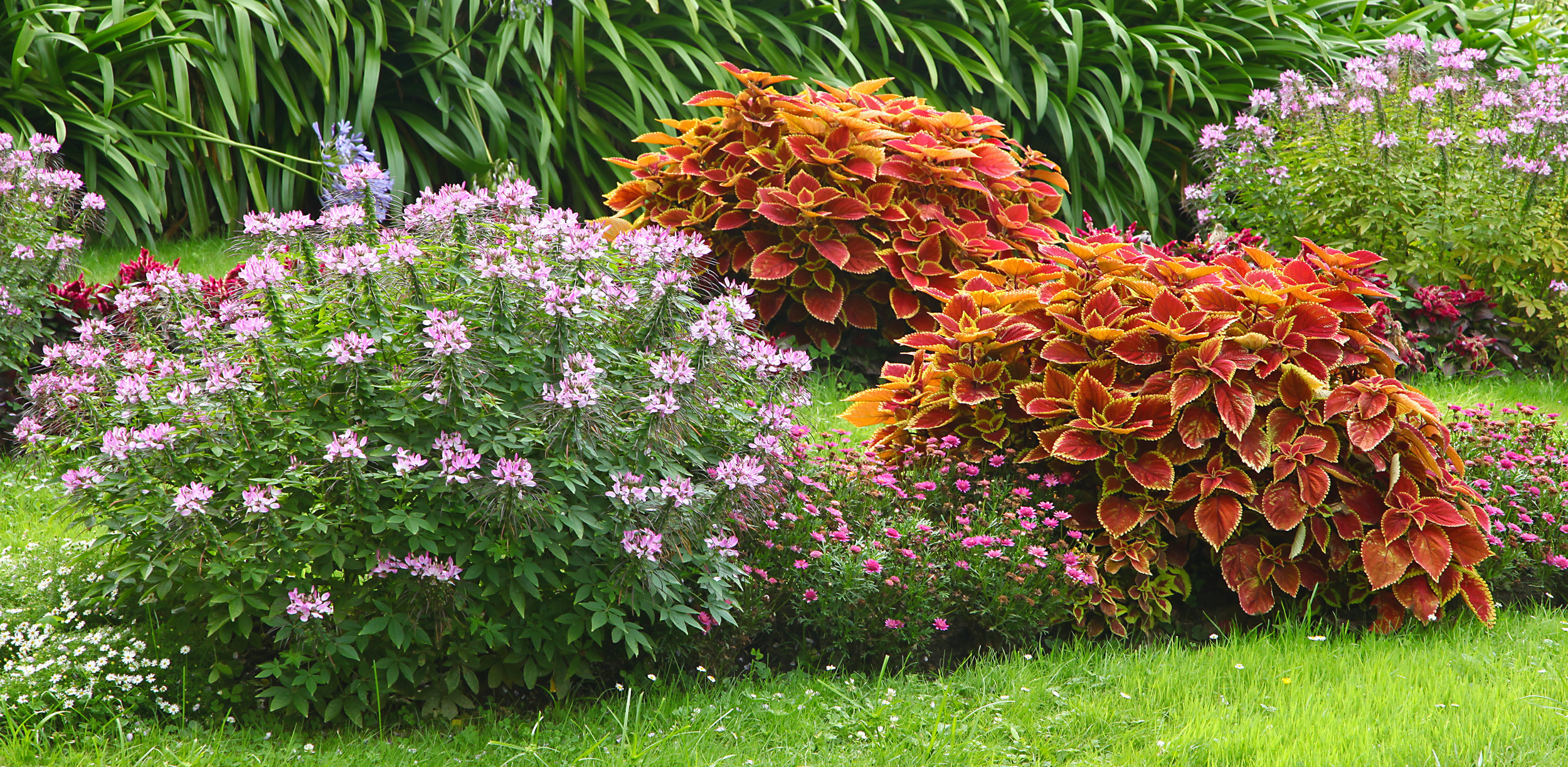 Improve the Health of Your Plant Beds with Landscape Maintenance in Schuylkill County, PA