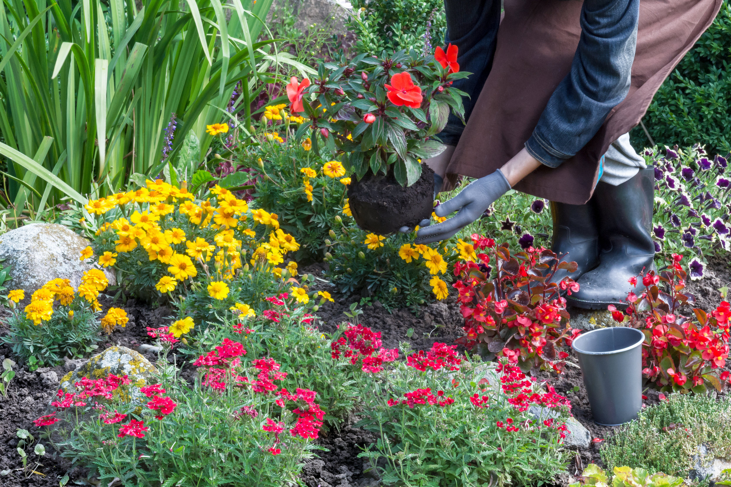 Ensure a Healthy and Blooming Flower Garden with Professional Landscape Maintenance in Lebanon, PA