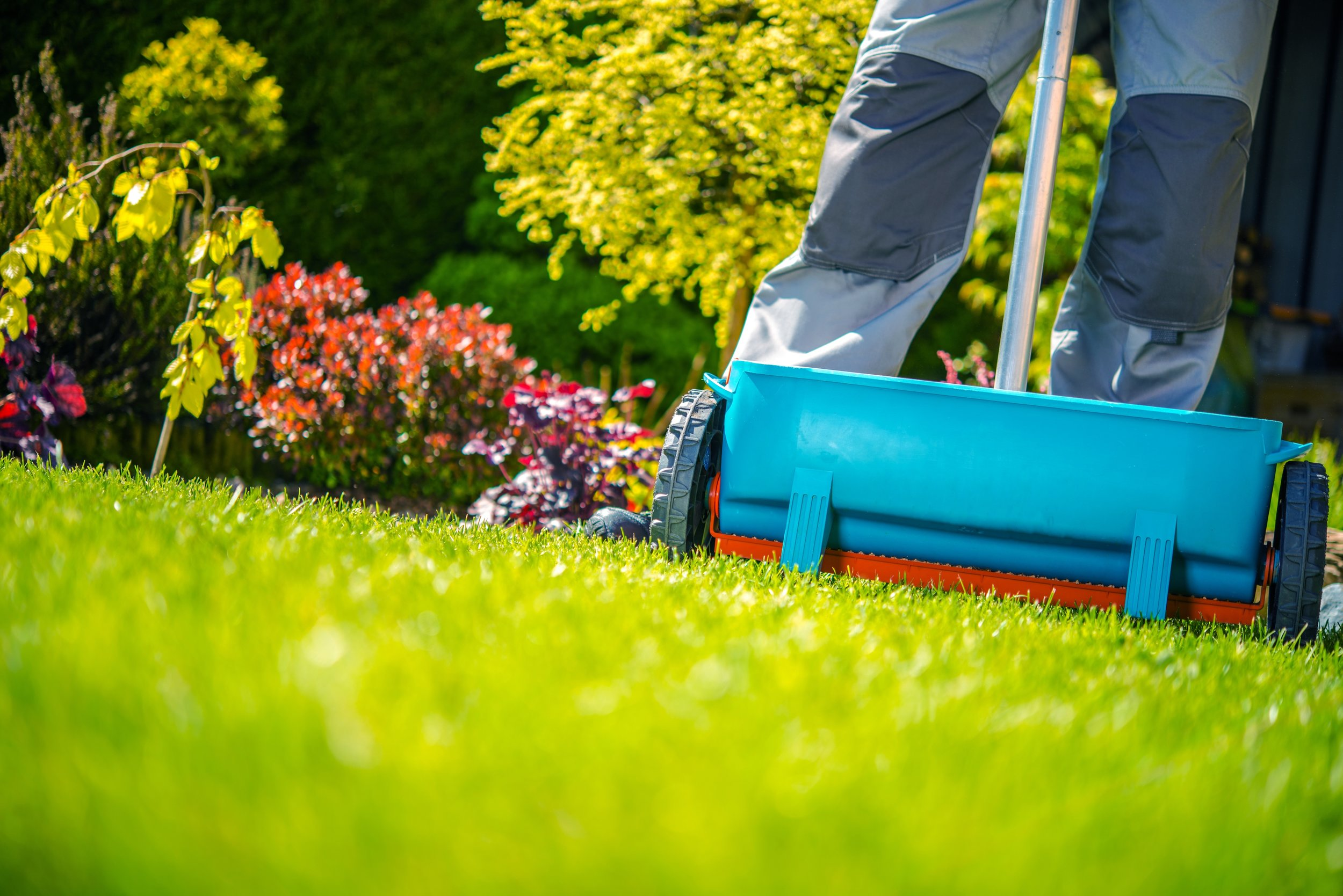 Why Fertilization Should Be Part of Your Lawn Care in South Whitehall, PA
