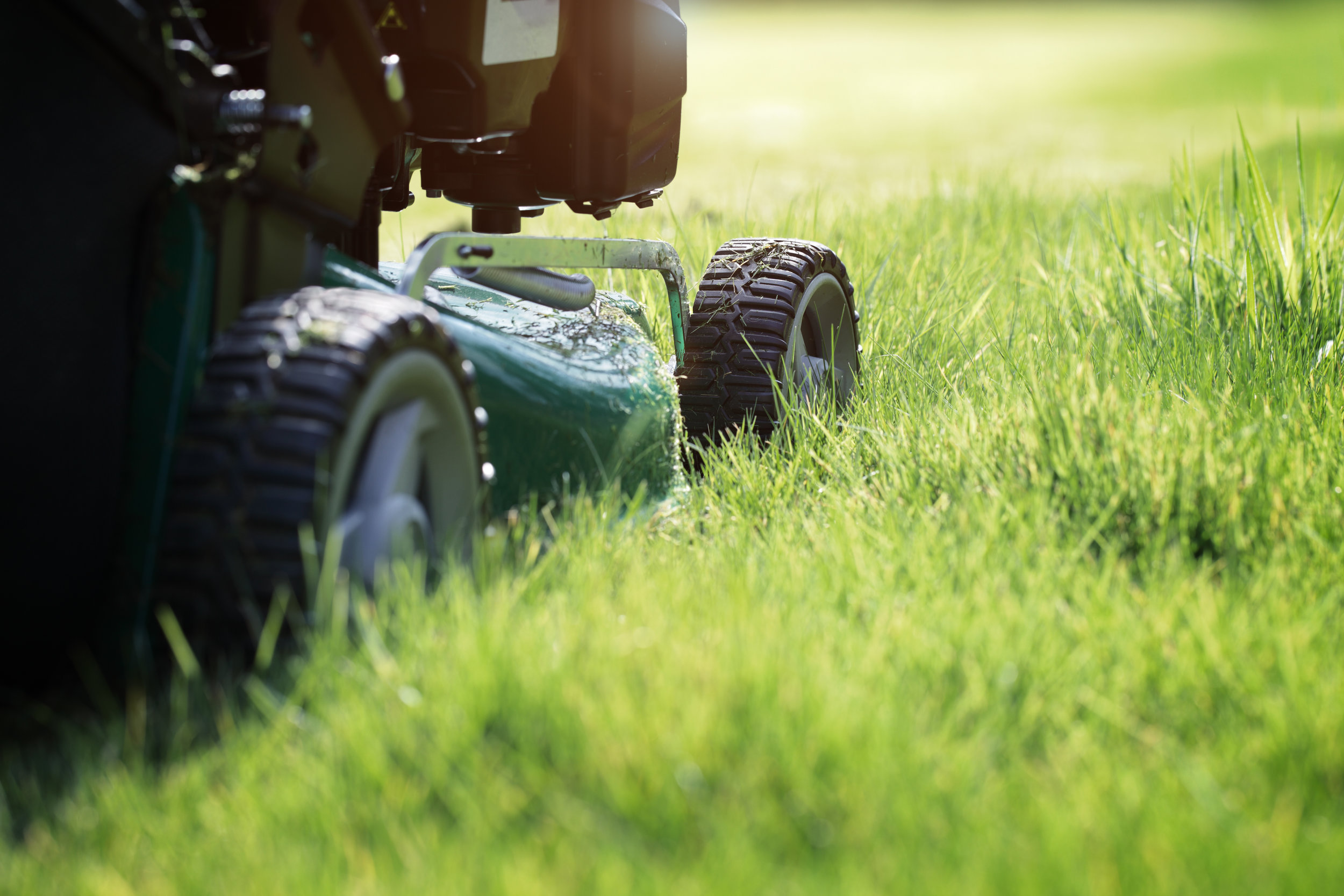 The Ways Lawn Care Can Extend the Longevity of Your Lehigh County, PA, Property