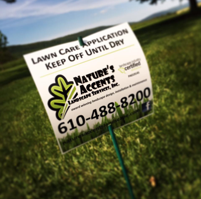 Low Maintenance Lawn Care Solutions in the Wayne Township, PA, Area