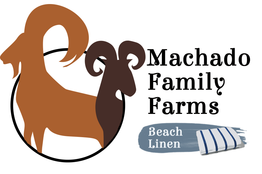 Machado Beach Linen 2.jpg