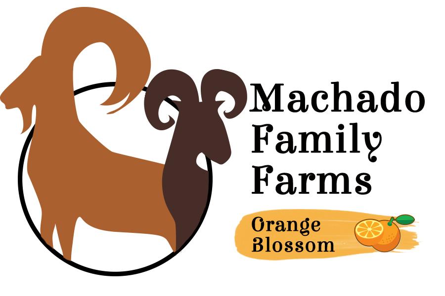 Machado Orange Blossom 3.jpg