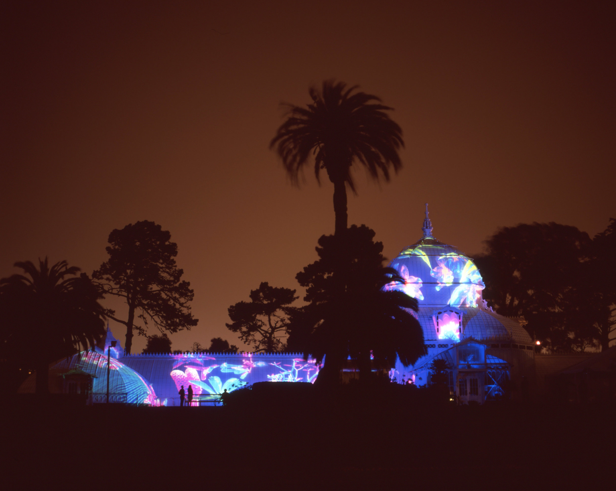 Conservatory of Flowers (Summer of Love)