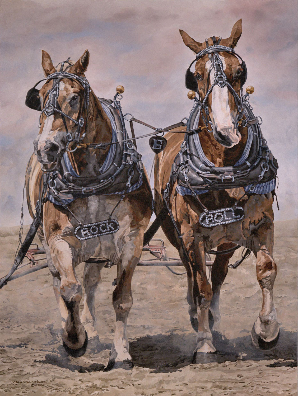 Draft Horses Deborah Rae Nelson