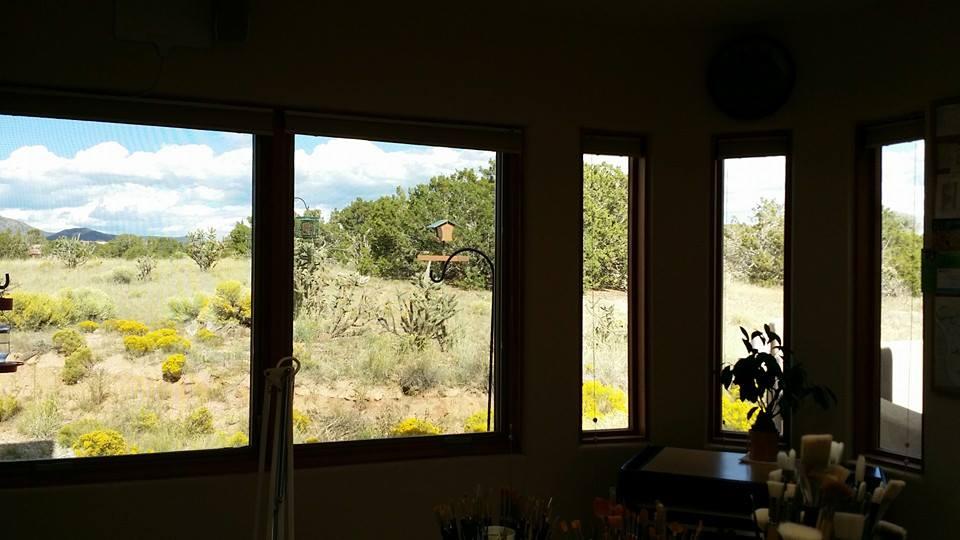 Views from My Studio