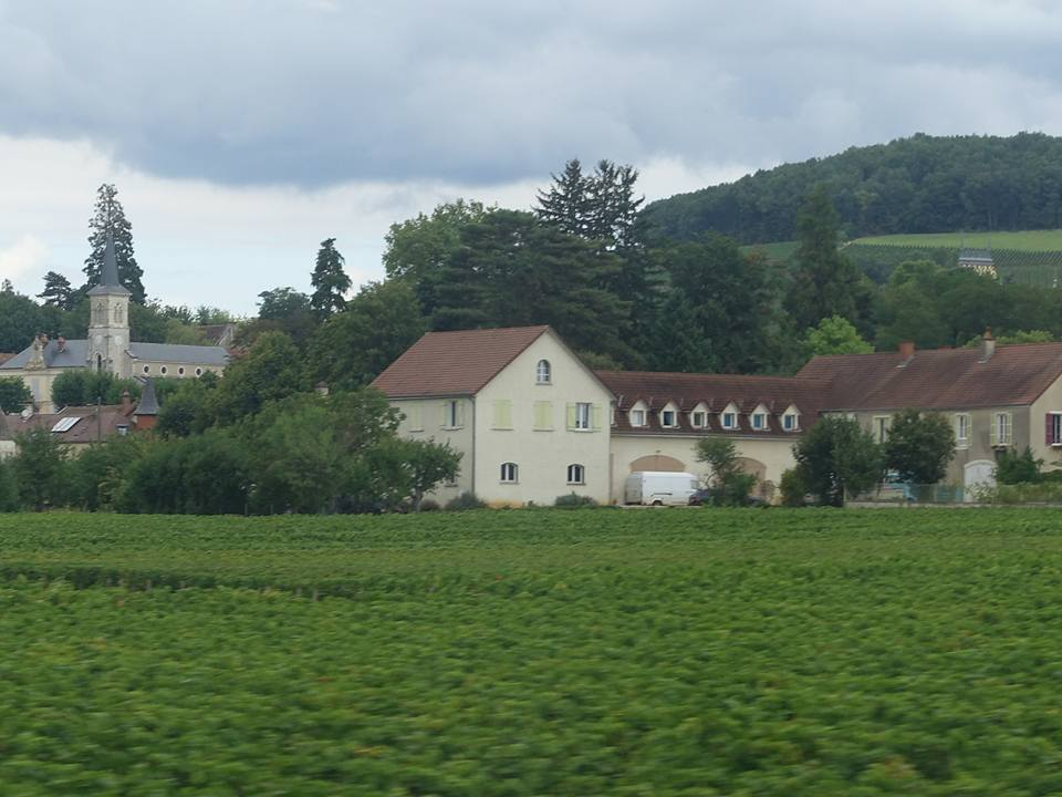 Domaine d'Ardhuy Winery