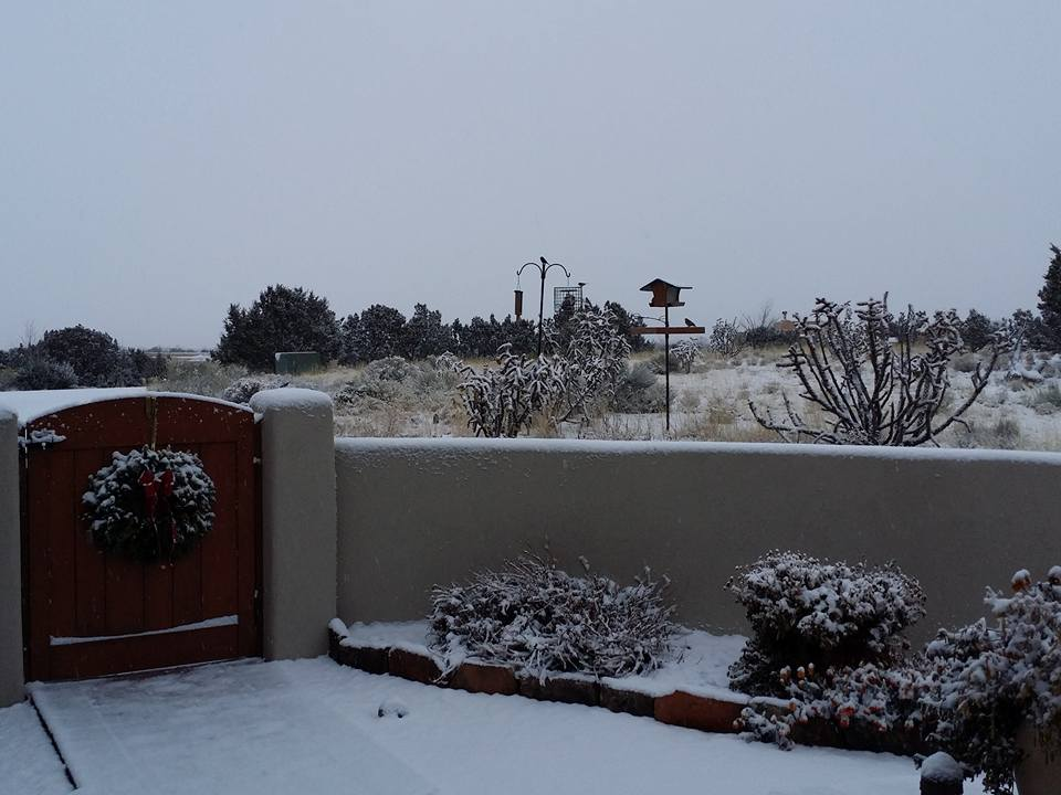White Christmas morning