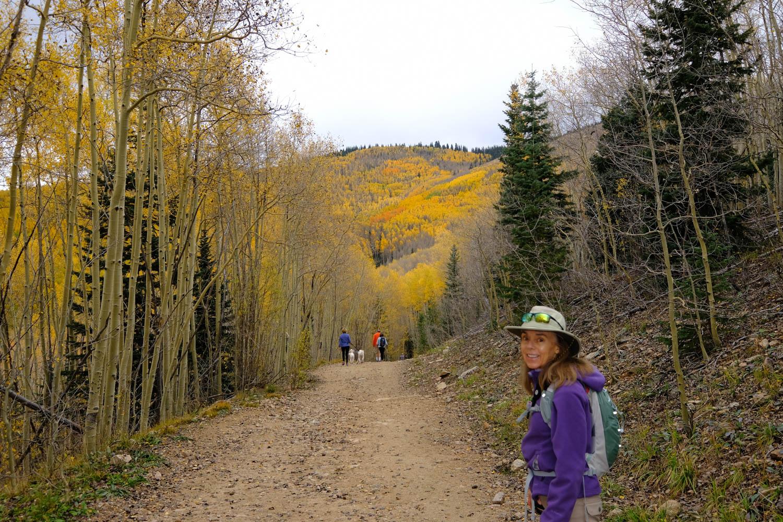 Aspen Vista Trail 2018