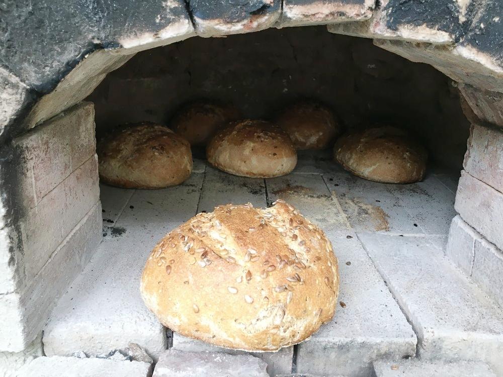 Three seed in oven.jpeg