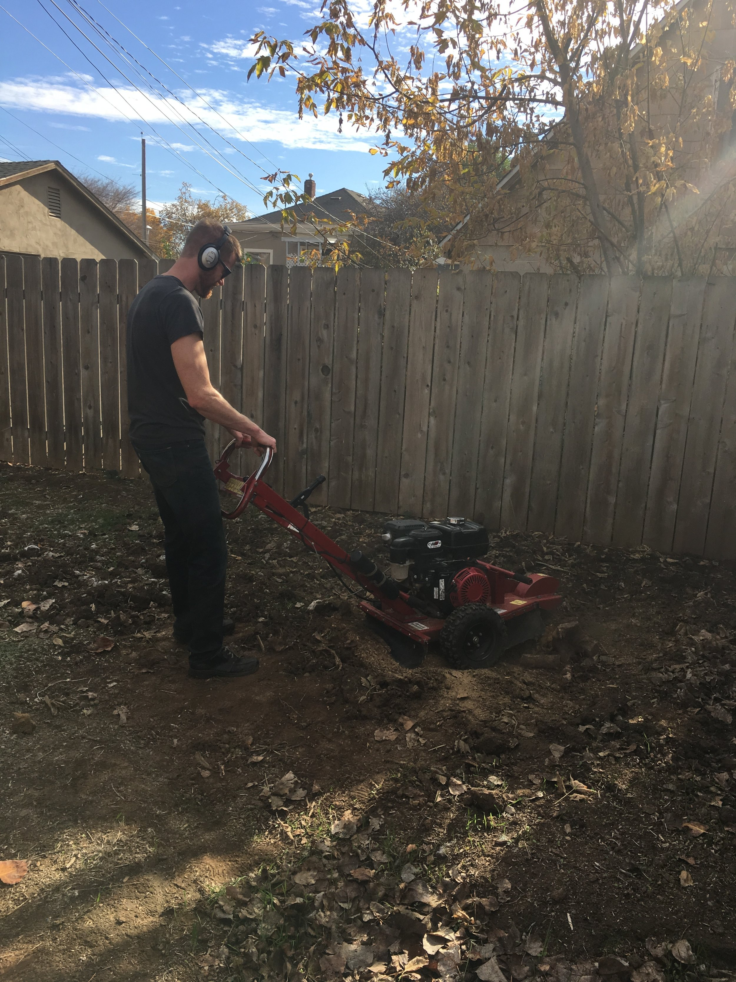 - Tim's working the grinder on one of the smaller stumps in the yard.