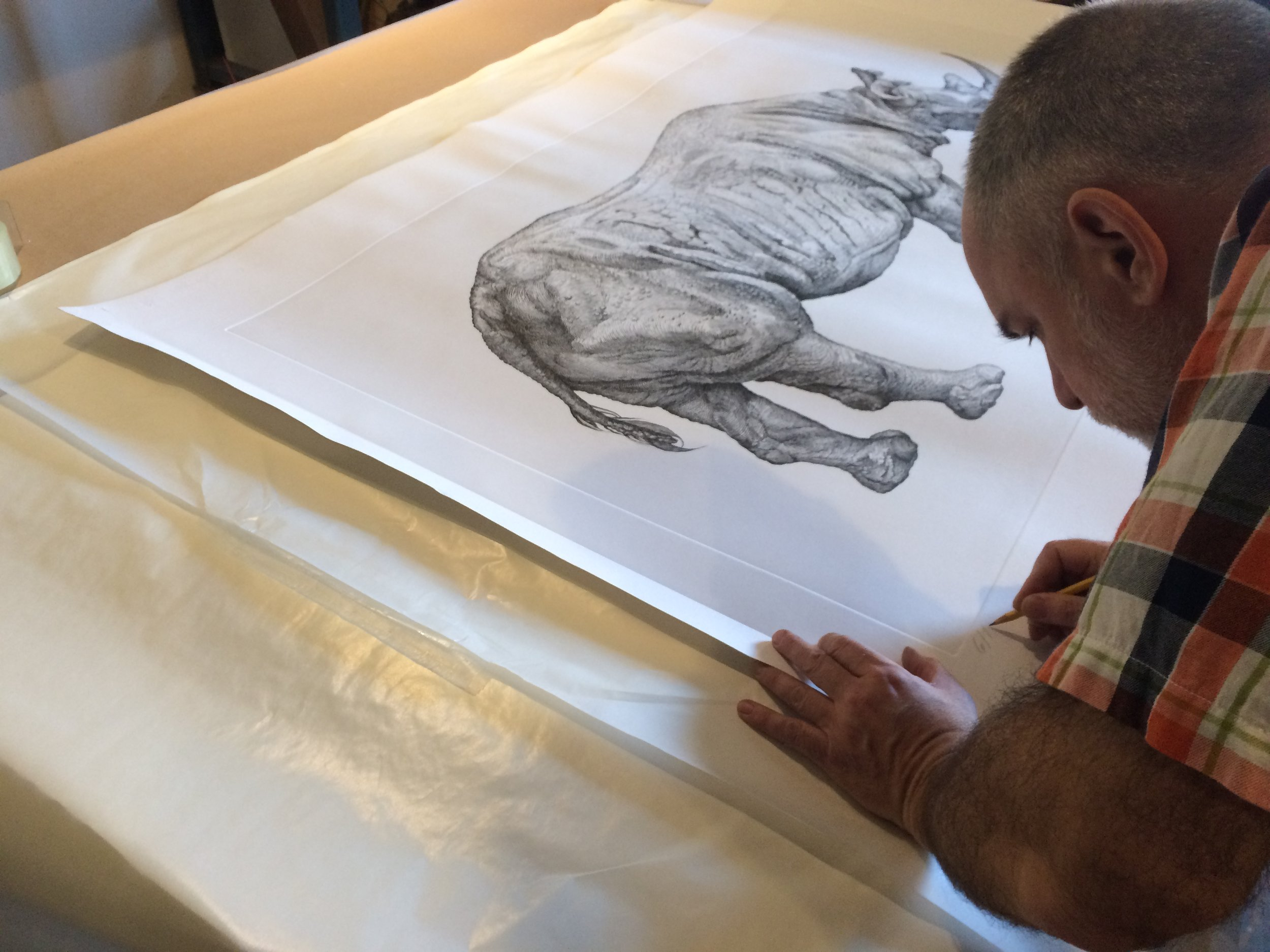 David signing a collasal Rhinoceros print.