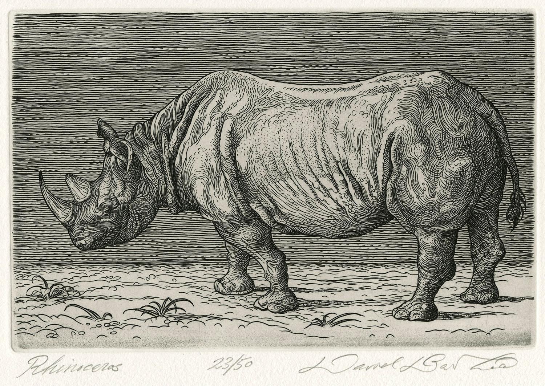 rhino_smallfull_zoom.jpg