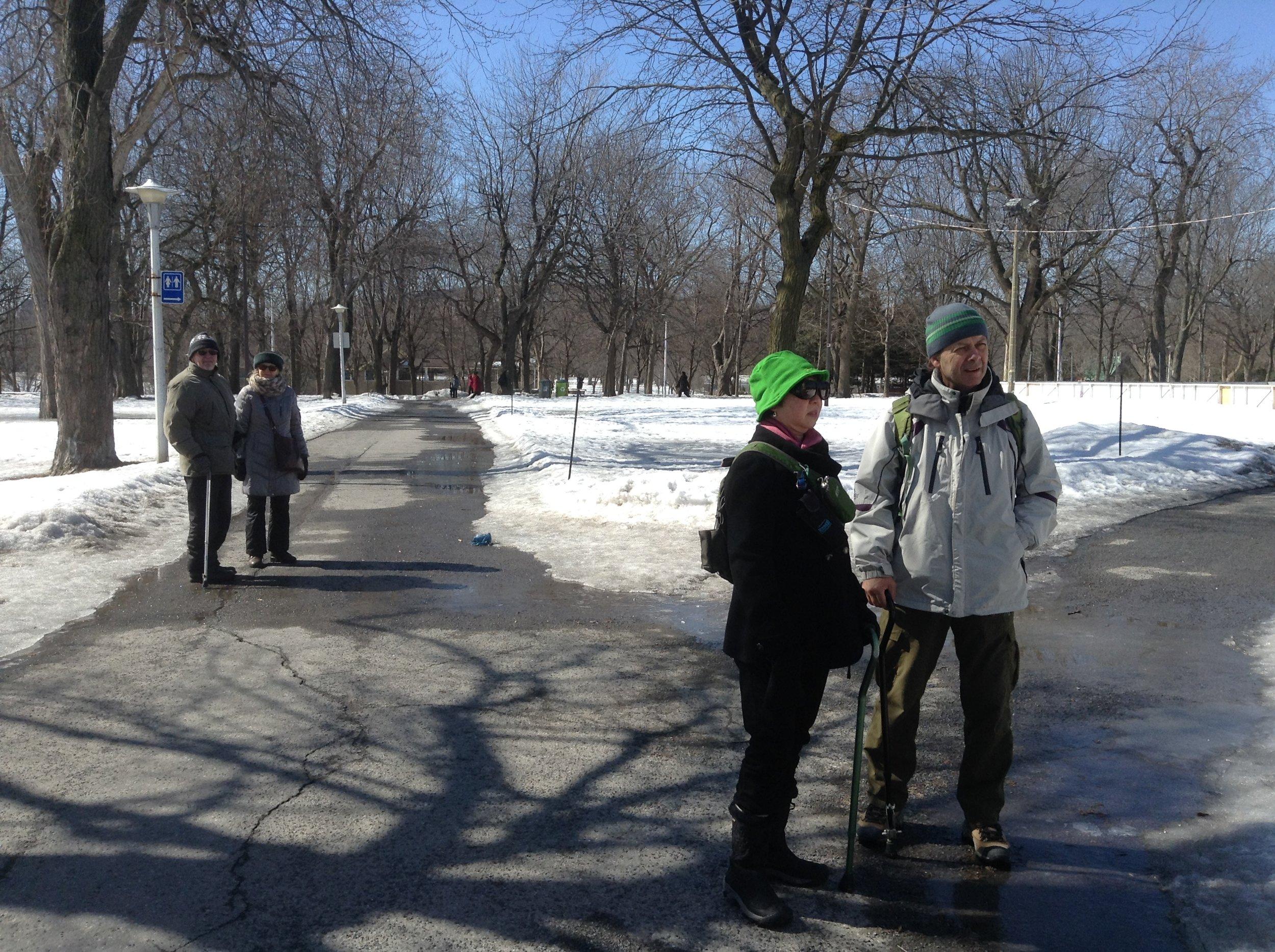 Marche au parc Lafontaine