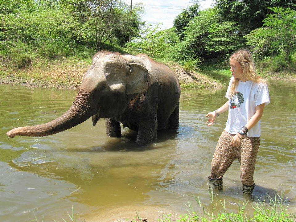 Summer 2011, Wildlife Friends Foundation Thailand