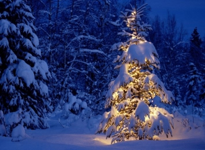 How to have an eco friendly and ethical Christmas #1 : Christmas