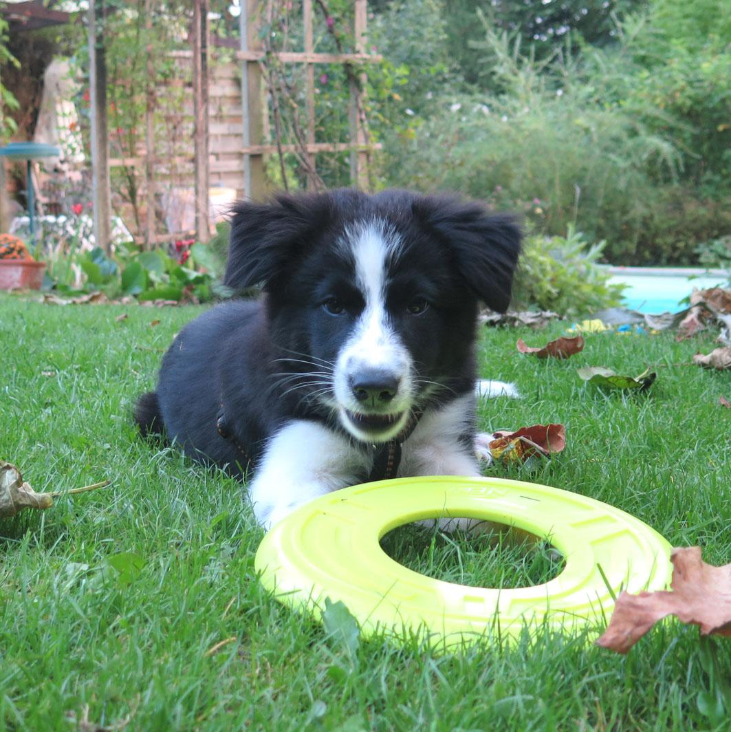 Jordy 3 Monate | Playtime