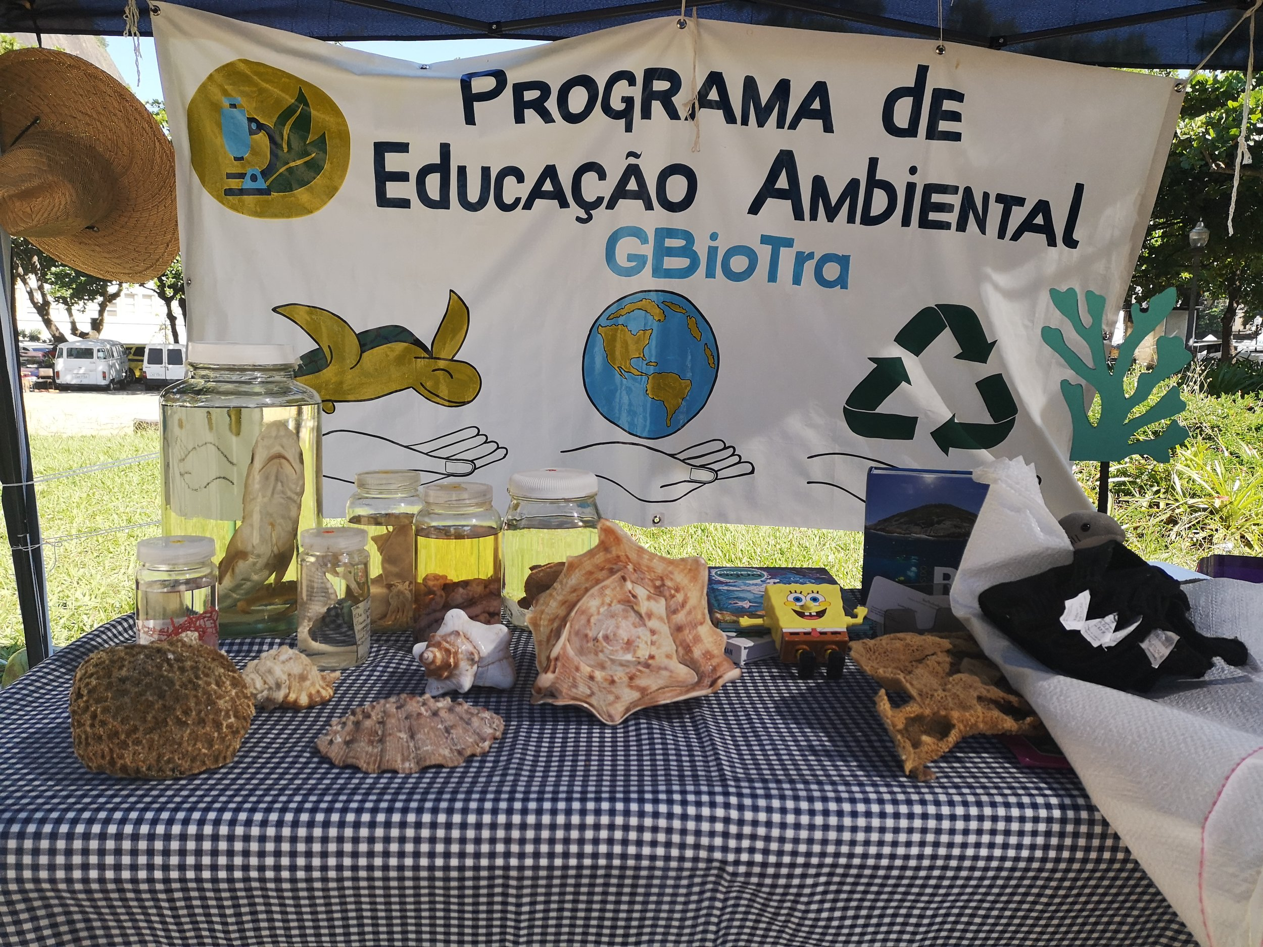 Educating people about biodiversity in the Guanabara Bay.