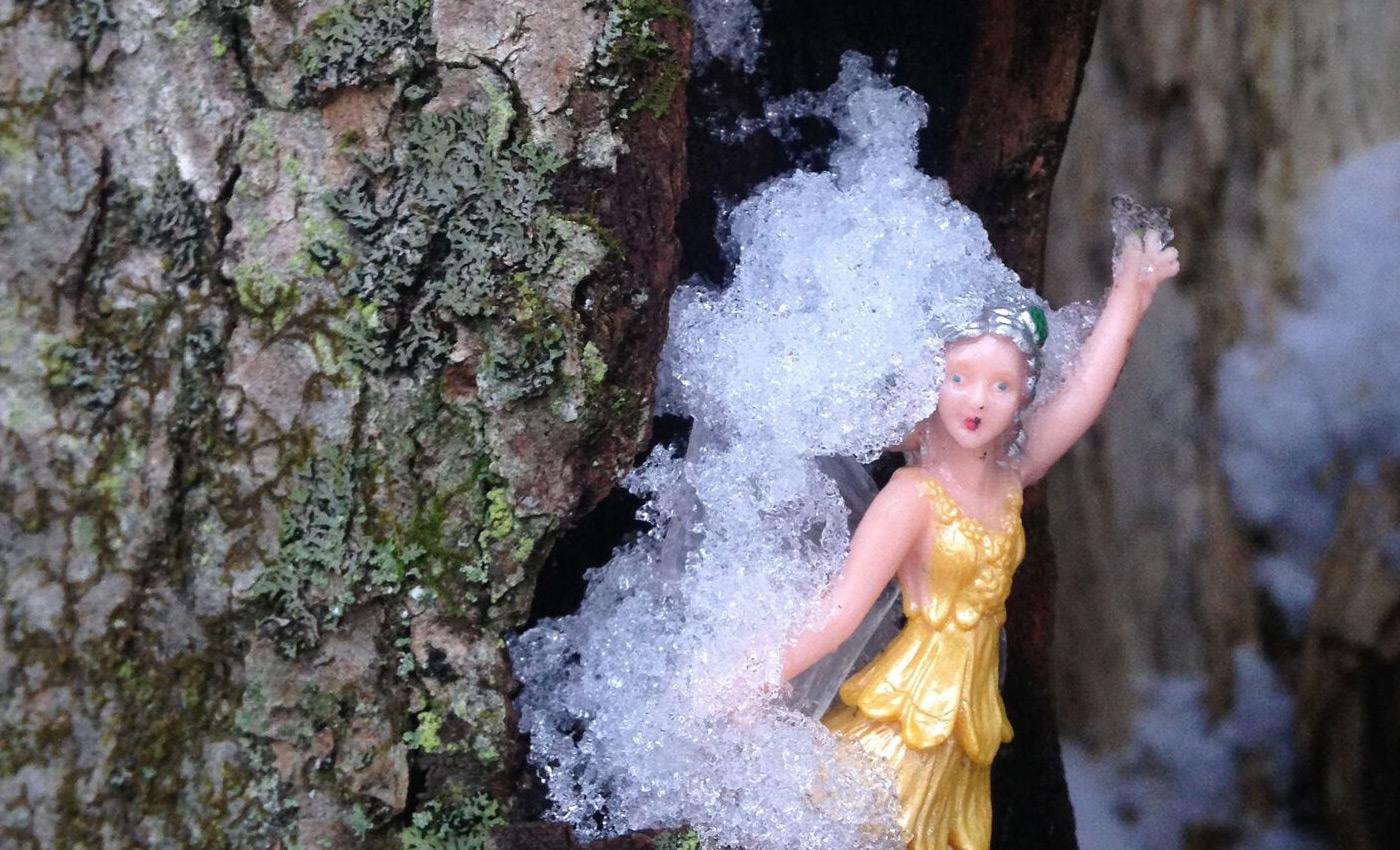 WW_Slideshow_Fairy2.jpg