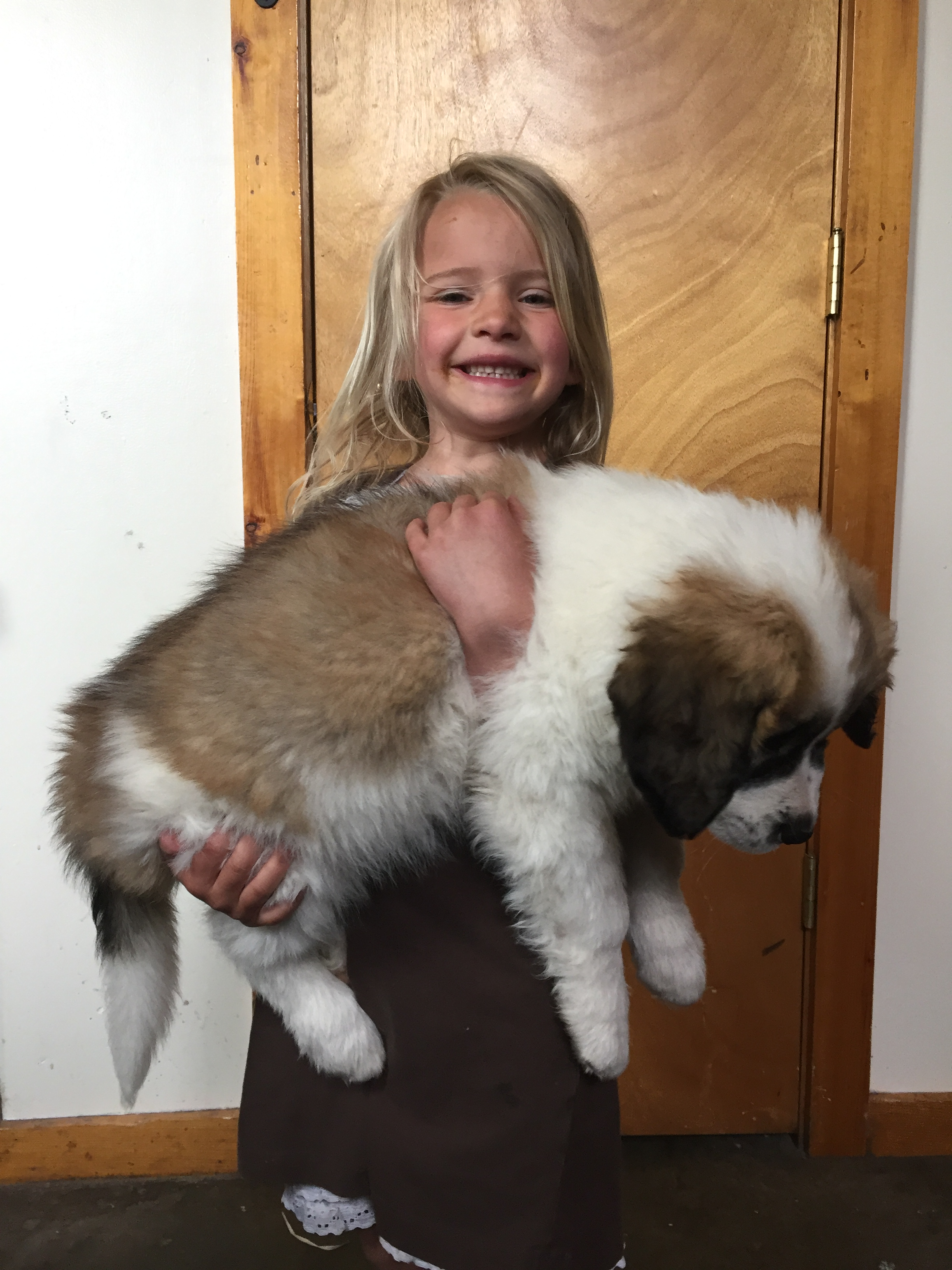 Summit's only 8 weeks old.  Almost too big to handle!