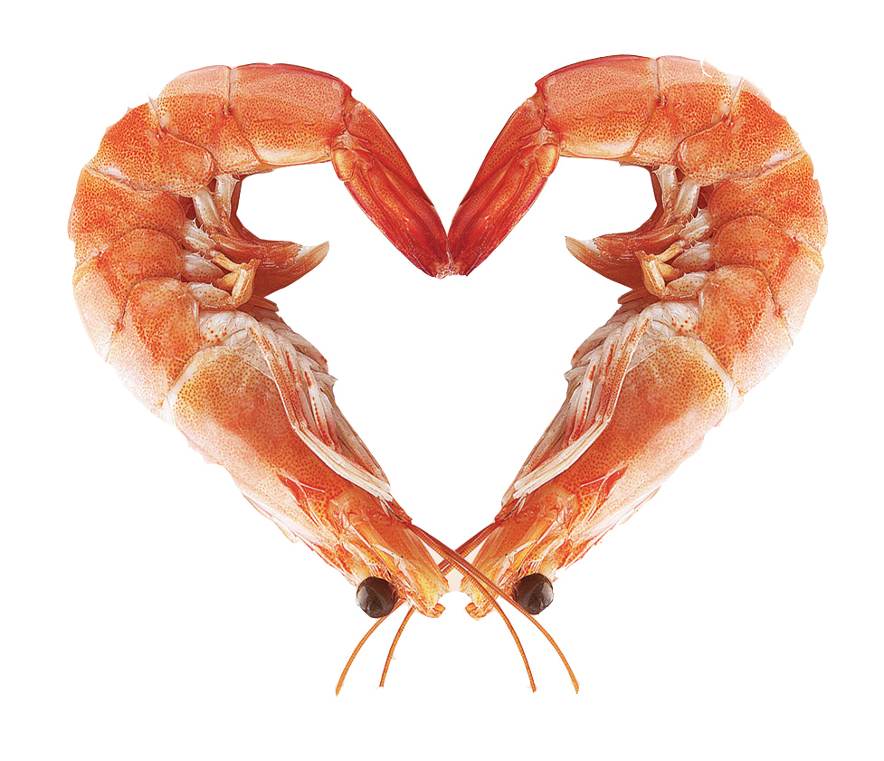 Shrimp Heart.jpg