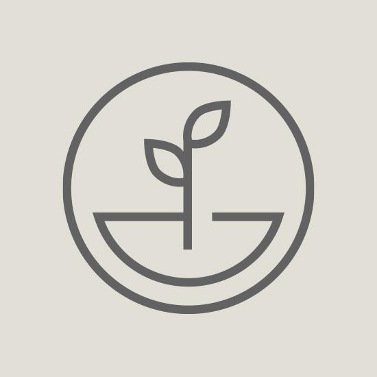 Icon 1 gray.jpg