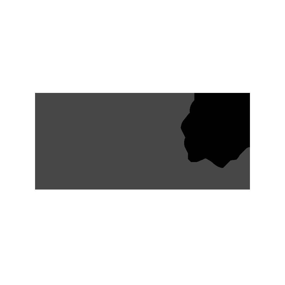 RUBYNANOMED 2019.png