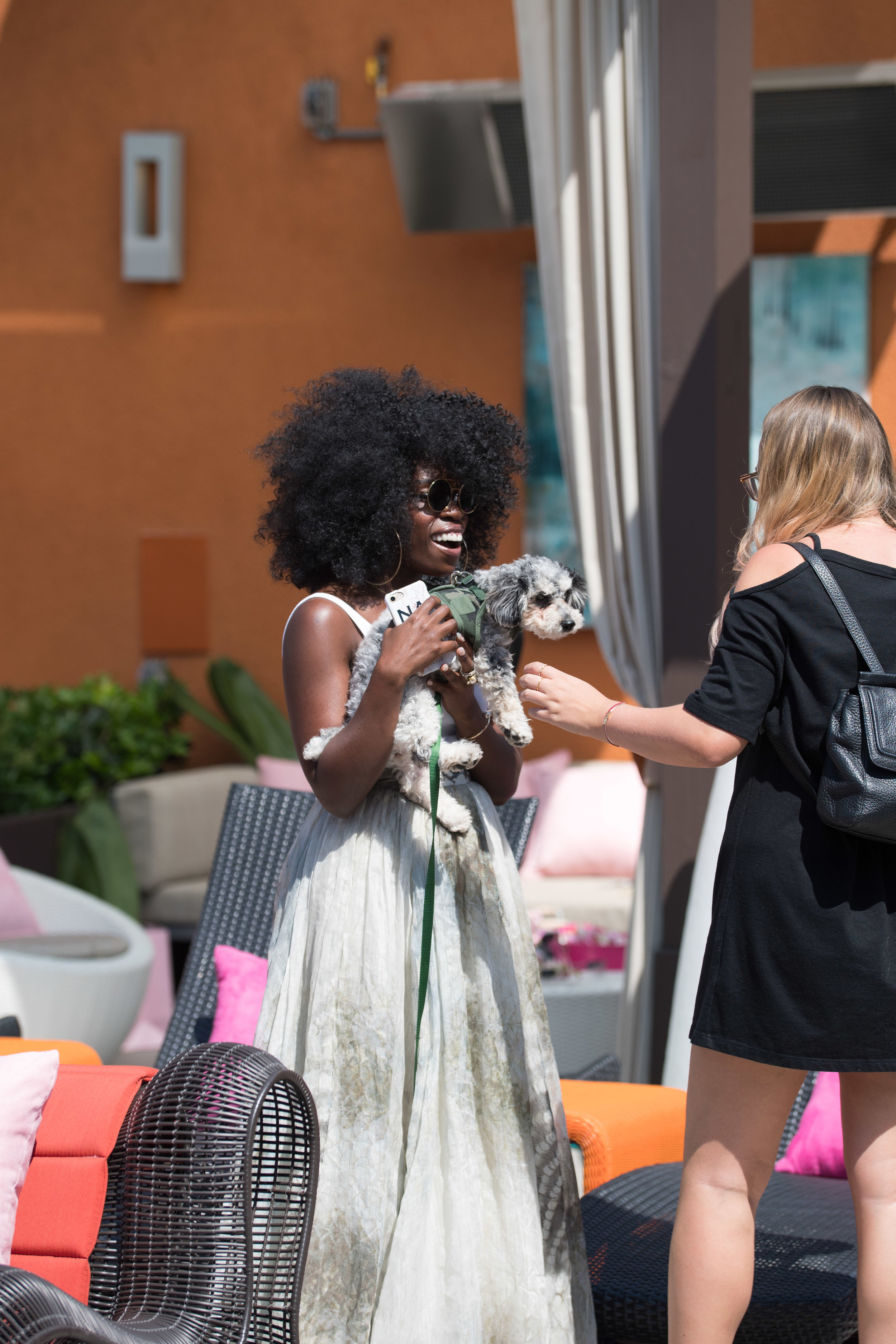 Peek Inside Celebrity Pre-Coachella Gifting Suite even the dogs had fun at the PLT party.jpg