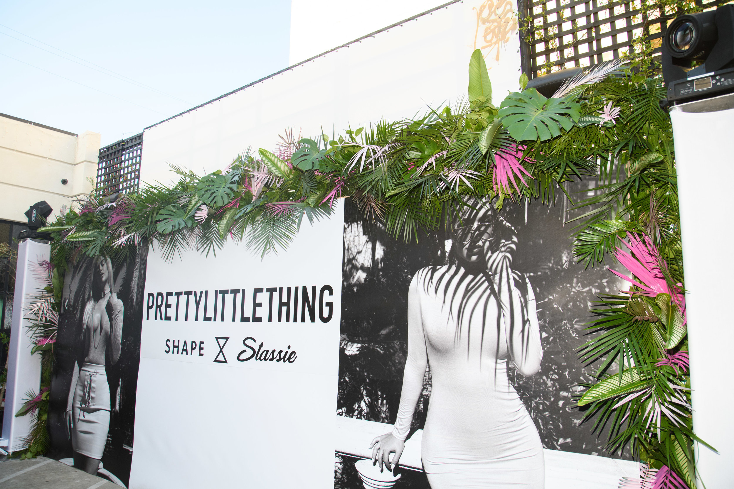 PrettyLittleThing New PLT Shape Collection with Stassie Celebrity Launch Party step and repeat with pink painted palm fronds.jpg