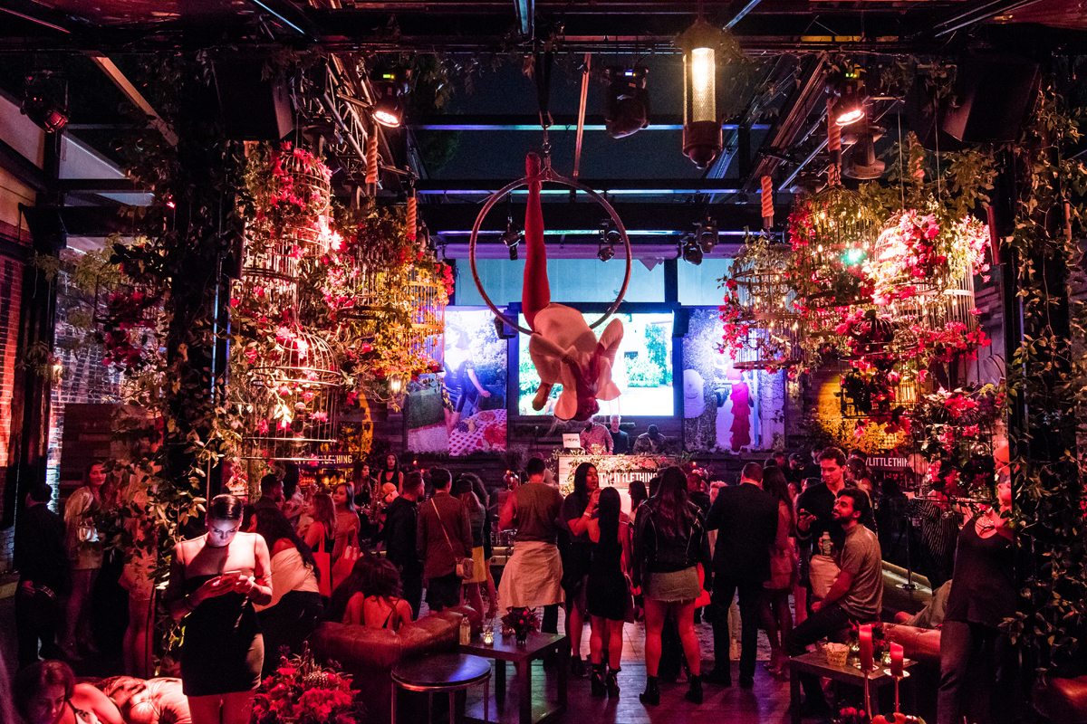 PrettyLittleThing PLT X Olivia Culpo Collection  Celebrity Launch Party aerialist above the crowd.jpg
